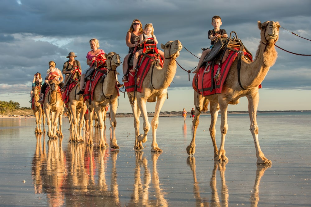 Camel rides up Broome's famous Cable Beach, Western Australia.