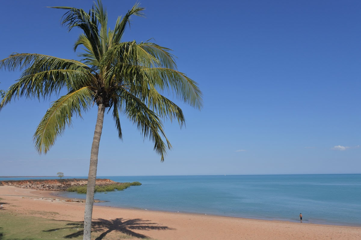 View of Town Beach in Broome, WA with palm tree overhanging beachside.