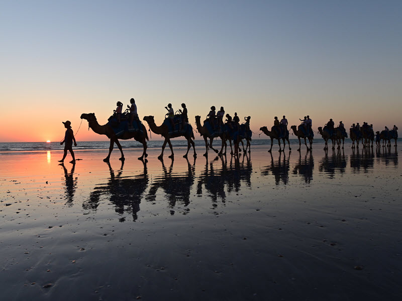 Outdoor experience and things to do in Broome with camel riding on Cable Beach.