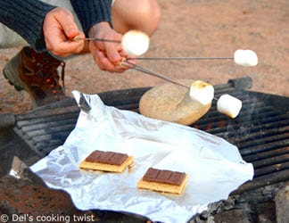 easy camping recipes – s'mores, melting marshmallows over campfire