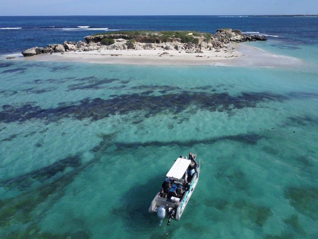 fishing boat at essex rocks off jurien bay