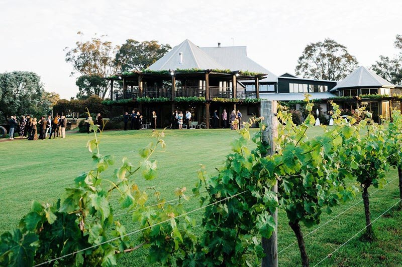 vasse felix top wineries in margaret river