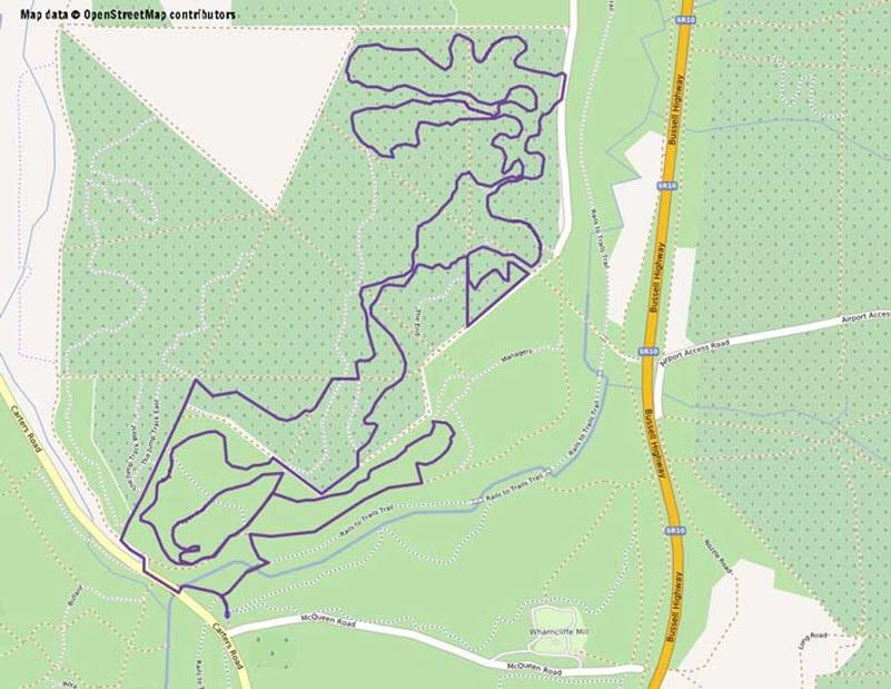 the pines margaret river mountain biking trail