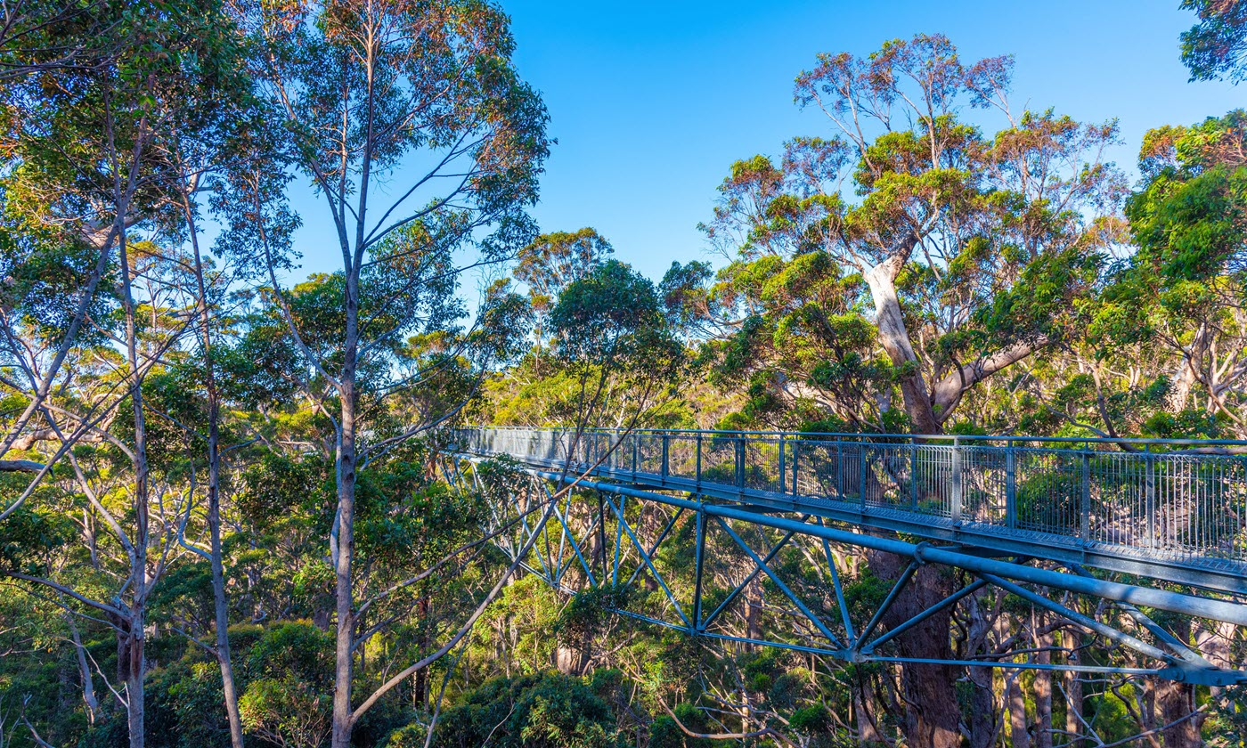 Walpole-Nornalup National Park in WA.