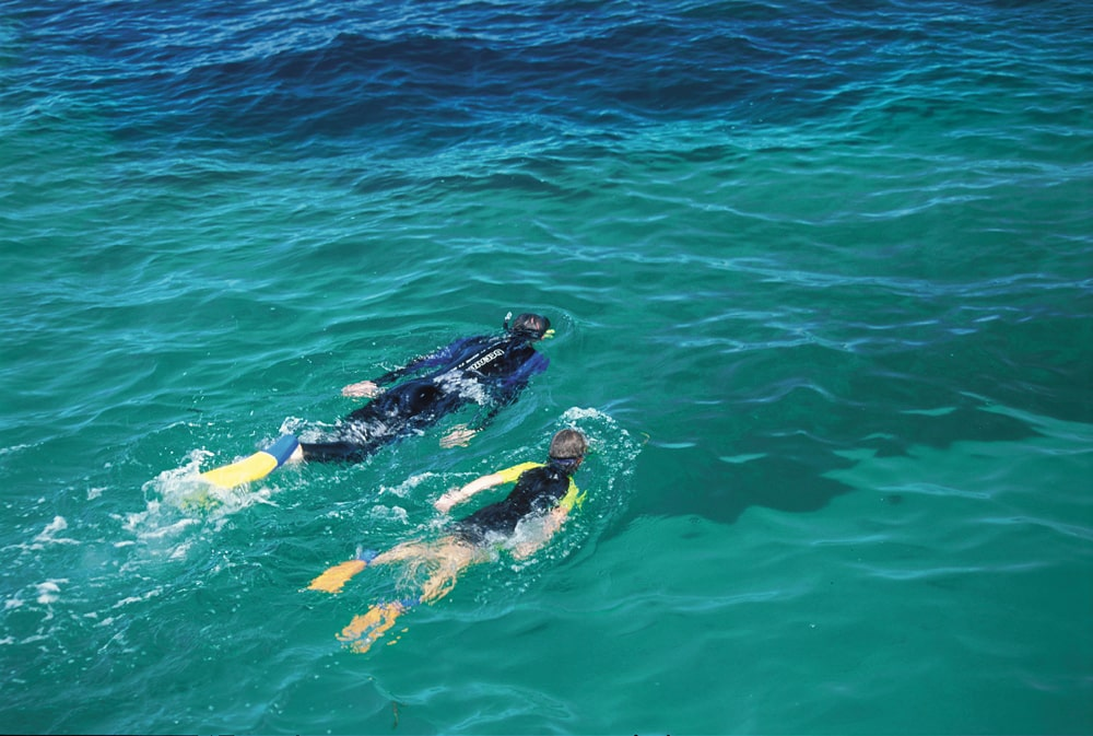 Snorkelling right off the jetty at Jurien Bay.