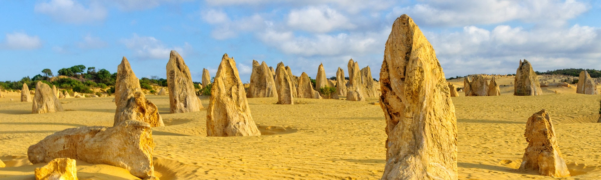 Pinnacles in the desert at Nambung National Park in WA.