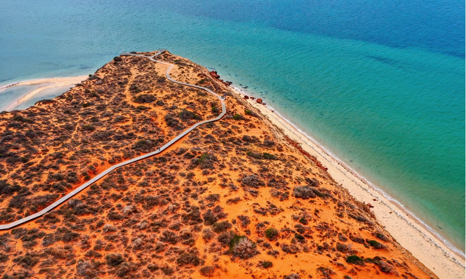 Visiting a beach in Shark Bay on list of things to do, Western Australia.