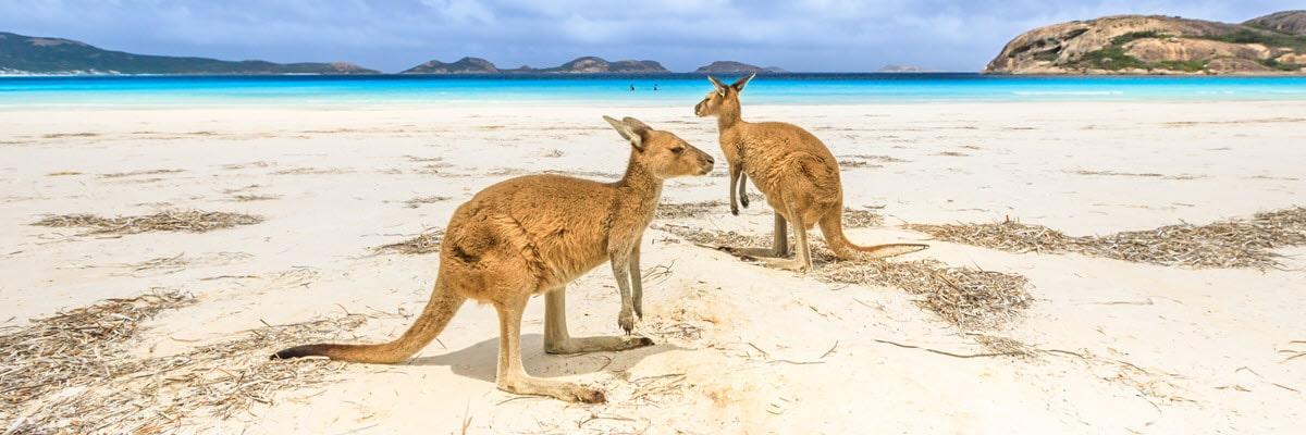 guide to western australia esperance