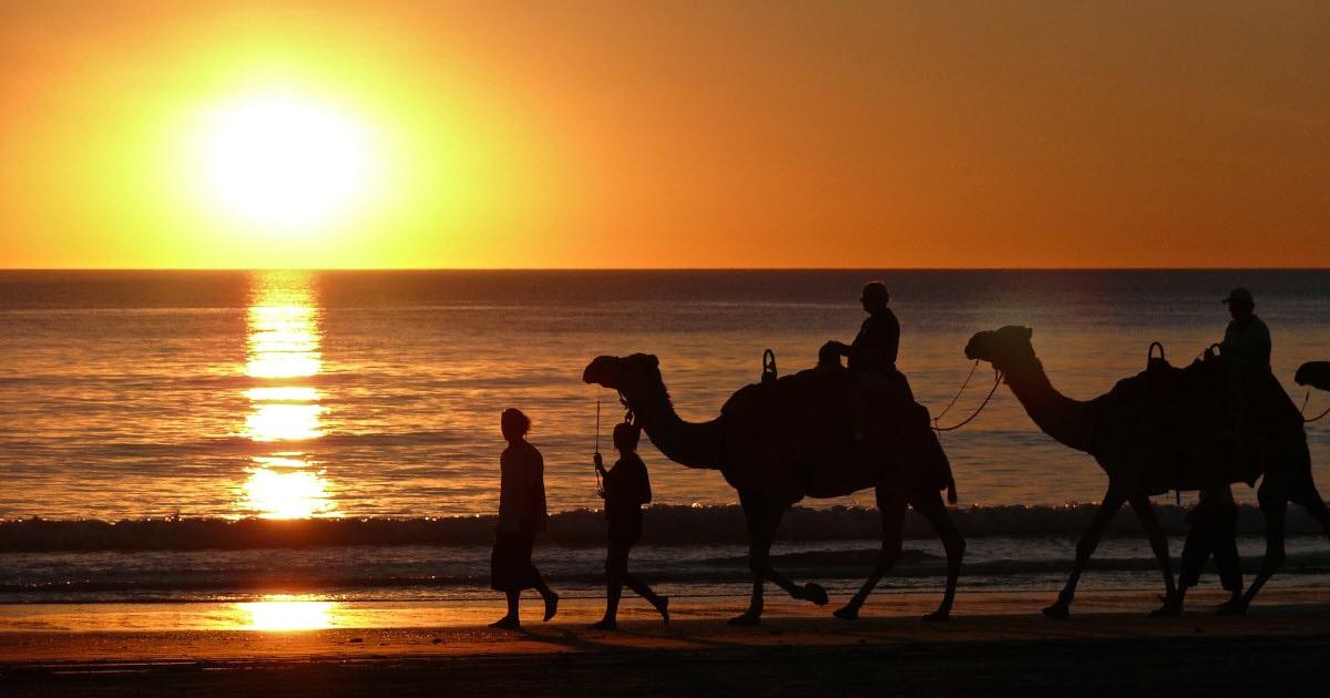 Broome camel rides across the beach.