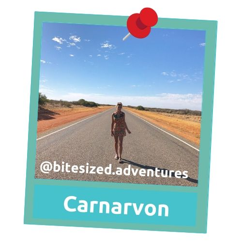 carnarvon travel memory bitesized.adventures