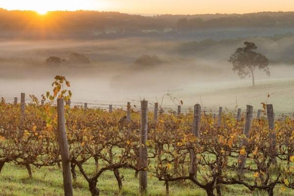 Margaret River Sunset - Western Australia