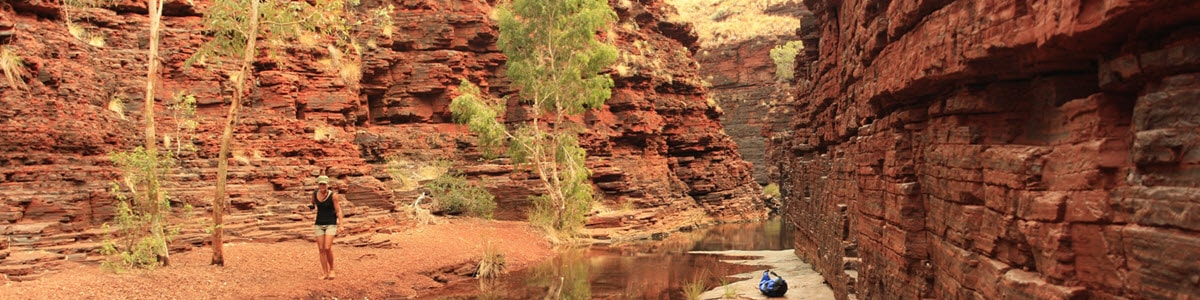 Pet Friendly Accommodation | Pet-Friendly Caravan Parks in WA