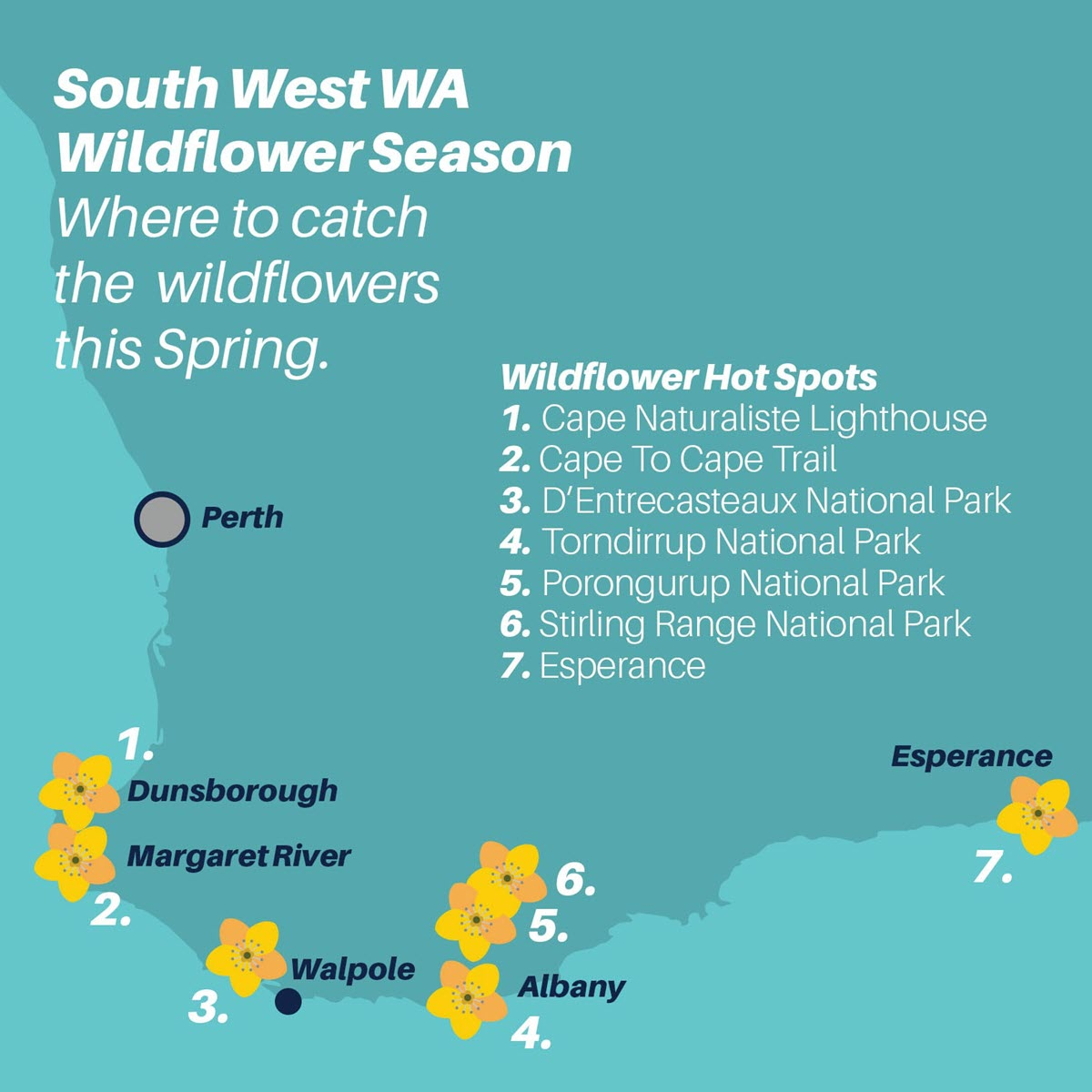 wildflower routes south west wa